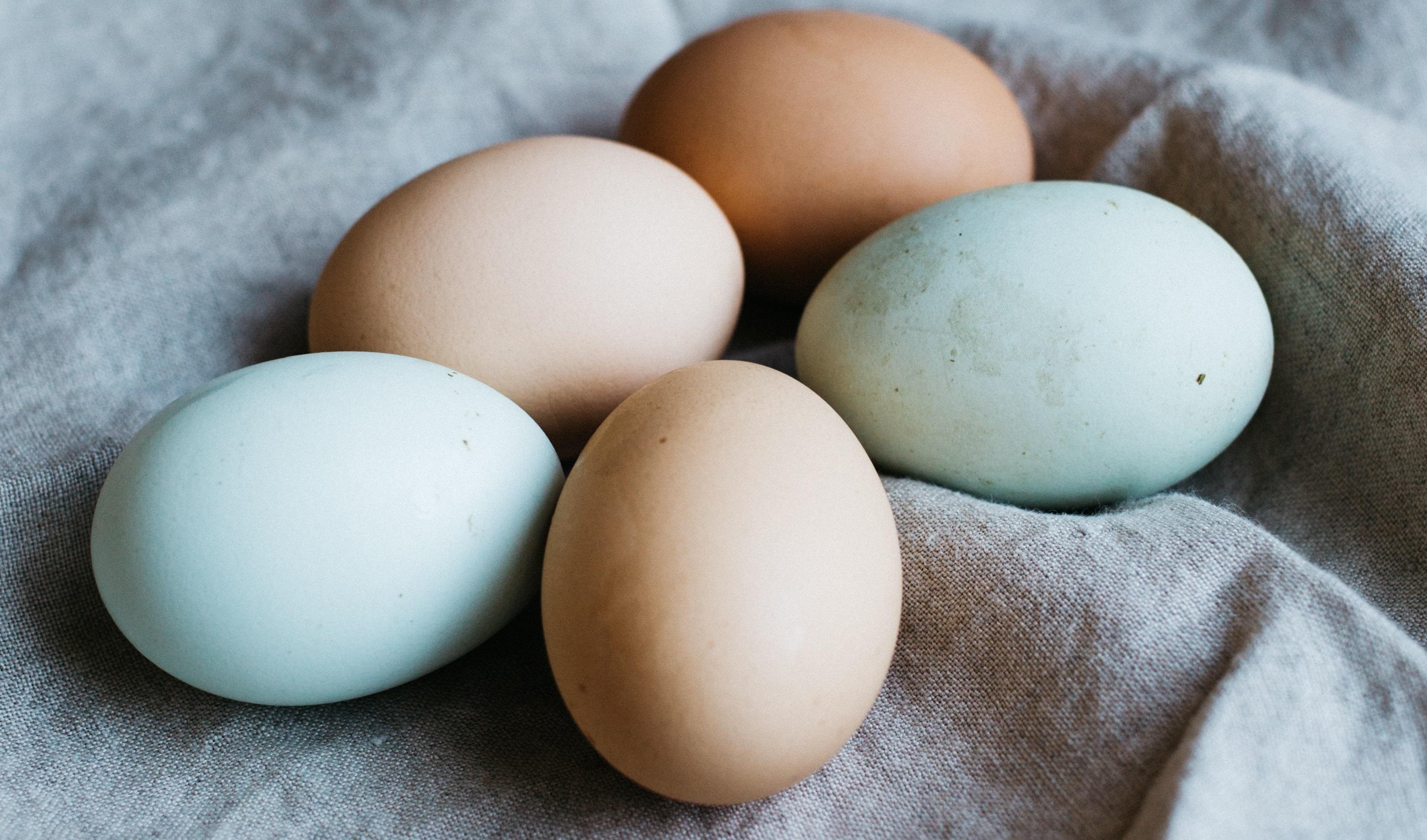 Hamilelikte Yumurta Yemenin Faydaları