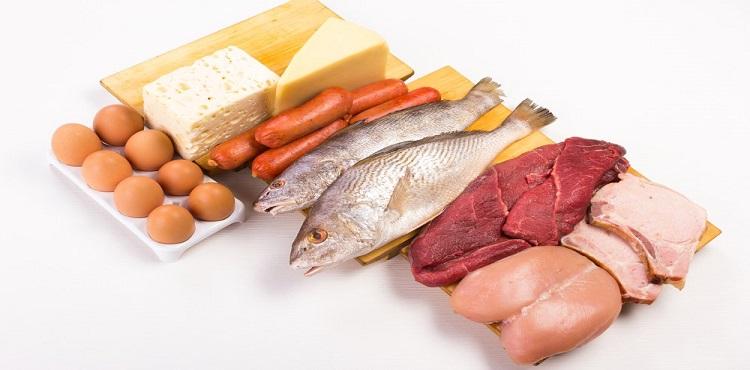 Günde ne kadar protein alınır